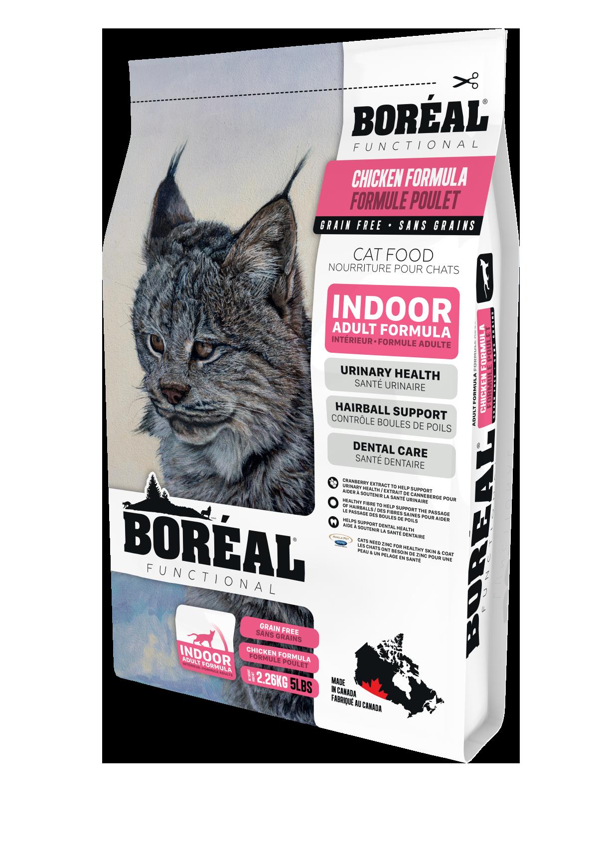 Functional Indoor Cat