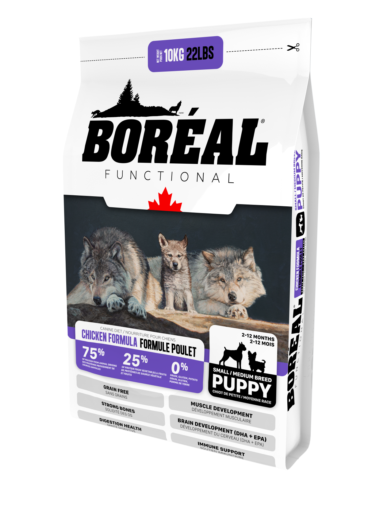 Functional Small and Medium Breed Puppy
